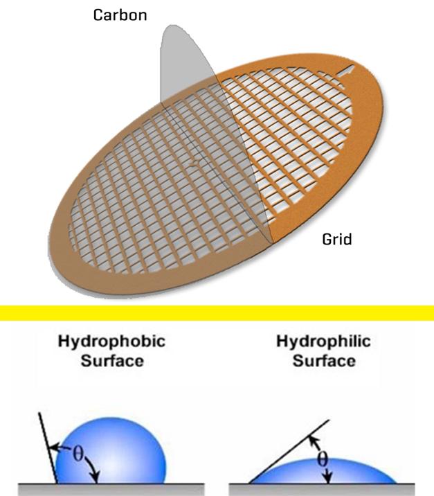 توری مورد استفاده در میکروسکوپ الکترونی عبوری (TEM Grids)