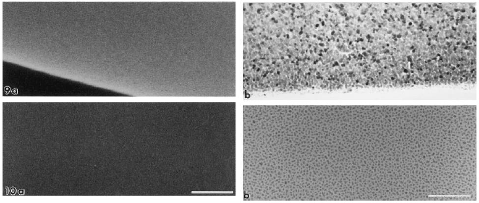 تصاویر لایه نازک پلاتین با شرایط مختلف بر روی نمونه ها با میکروسکوپ های SEM، FE-SEM و TEM قسمت دوم