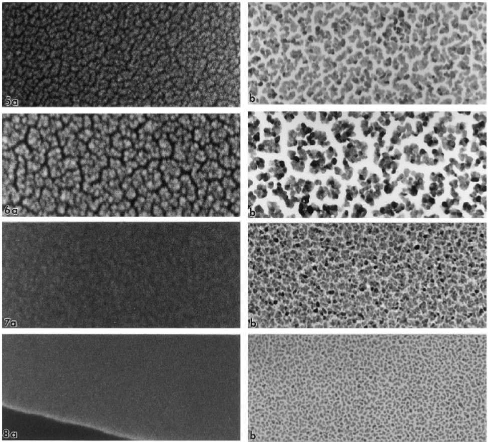 تصاویر لایه نازک پلاتین با شرایط مختلف بر روی نمونه ها با میکروسکوپ های SEM، FE-SEM و TEM